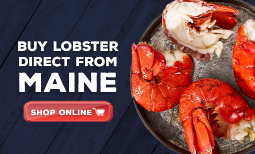 Buy Lobster Direct from Maine